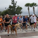  Dash for Dogs